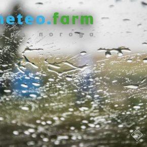 Начало лета в Украине прогнозируется прохладным и дождливым