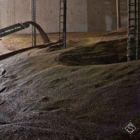 Пренебрегая фумигацией аграрии рискуют потерять до четверти урожая в зернохранилищах
