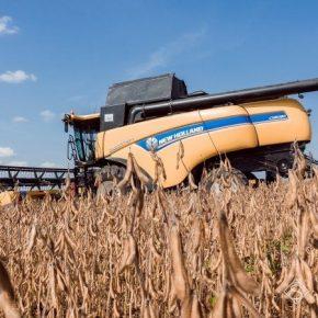 За два десятилетия урожайность сои в Украине выросло вдвое
