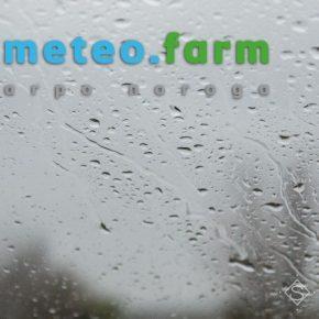 Неделя обещает быть дождливым и прохладным — прогноз погоды