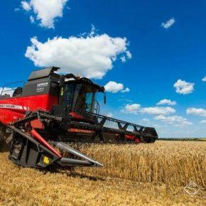 В Украине собрано четверть урожая ранних зерновых и зернобобовых культур