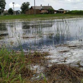 В трех областях непогода нанесла ущерб сельхозкультурам и садам