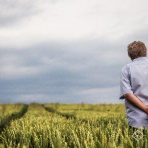 На Кировоградщине анонсировали создание инновационных аграрных кластеров
