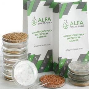 ALFA Smart Agro проводит бесплатную фитопатологическая экспертиза семян