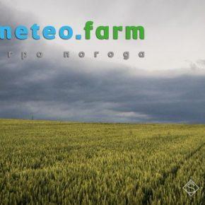 Конец июня в Украине выдался дождливым и жарким — Метео Фарм