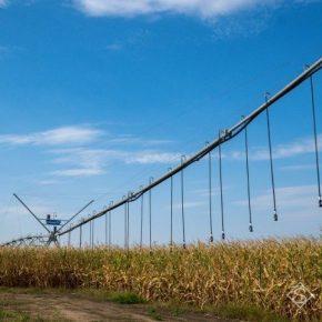 Для орошения полей в ночное время аграриям Юга предлагают предоставлять бесплатную электроэнергию