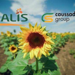 Euralis Semences и Caussade Semences объявили о слиянии