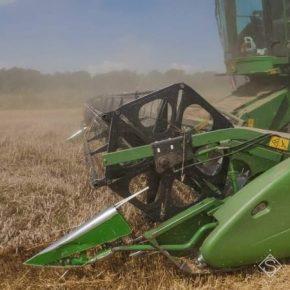 На Харьковщине озвучили прогноз урожая зерна