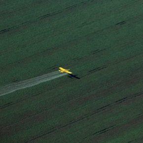 В ООН призывают прекратить экспорт опасных пестицидов до бедных стран