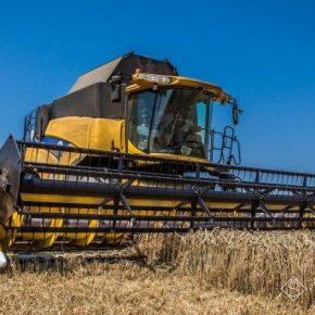 На юге Николаевской области подходит к концу уборка ранних зерновых