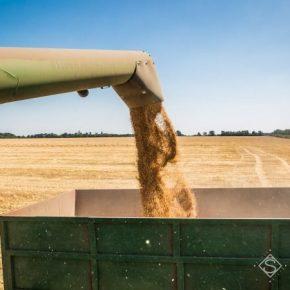 В Днепропетровской области намолочено первый миллион тонн зерна нового урожая
