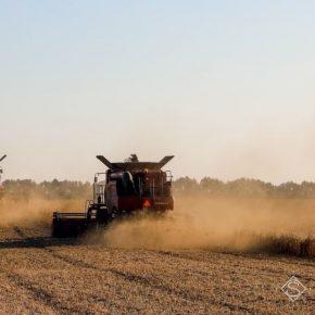 С полей на Харьковщине собран первый миллион тонн зерна нового урожая