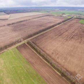 Более 6 млн га земель сельхозназначения в Украине используют «инопланетяне» — Апостол