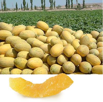уборка урожая дыни