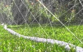 Полив грядки дырявым шлангом -  увеличивает плодородие почвы