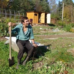 Как подготовить почву для растений с меньшими затратами труда ?