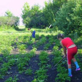 Работа на даче:выравниваем участок для огорода