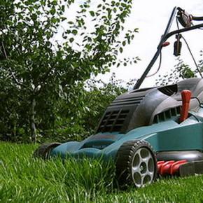 Роторной косилкой можно скашивать любые сорняки и кусты