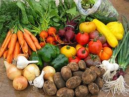 Овощи в жизни человека:история выращивания