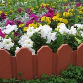 Как правильно сажать лилии на клумбу?
