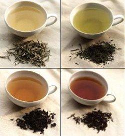 Какие вещества и витамины содержит чай?