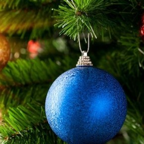 Как ухаживать за новогодней елкой в 2015 году