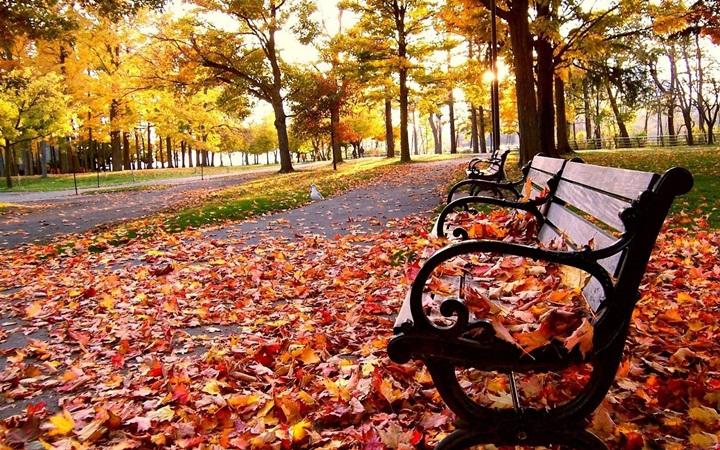 День за днем - ноябрь