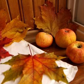 День за днем - октябрь