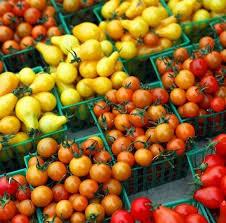 Здоровые помидоры: советы огородника-любителя