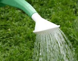 Утоление жажды - баланс водообеспечения