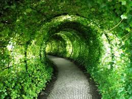 Как построить, садовый арку, на участке
