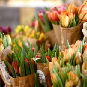 Как ухаживать за срезанными цветами
