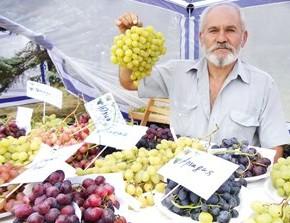 Ешьте виноград и не болейте!