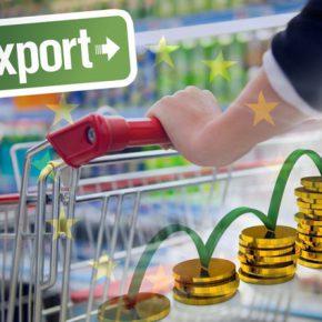 Топ-5 экспортных продуктов Украины и прогнозы на 2019 год