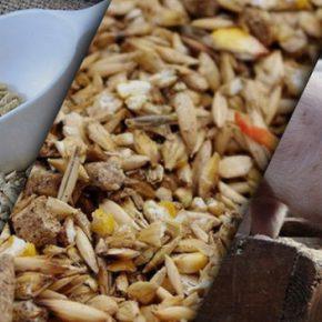 На Херсонщине в марте запустят новый комбикормовый завод