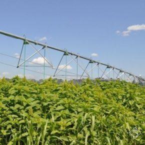 В Украине будет создан Координационный совет по развитию орошения